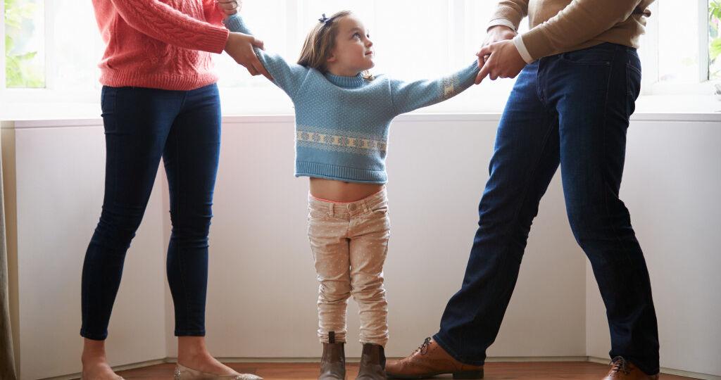 investigator - child custody