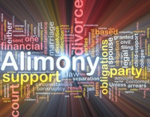 Alimony Reduction Investigations